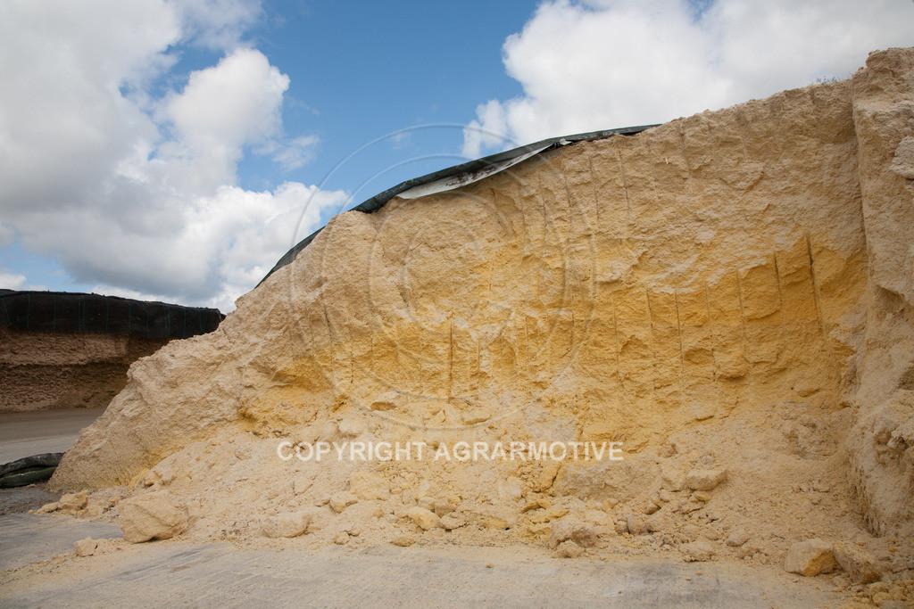 20100505-IMG_6149 | Fahrsilo einer Biogasanlage - AGRARFOTO
