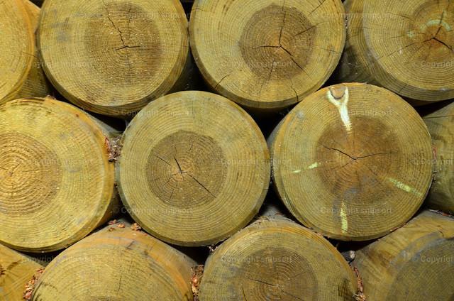 Gestapelte runde Holzbohlen | Dateil von sauber gestapelten runden Holzbalken.