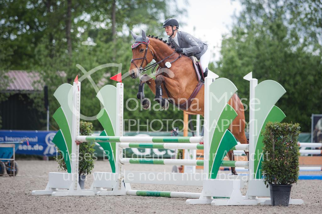 210525_LateEntry_SprPf-A2-282 | Late Entry Mühlen 25.05.2021 03 Springpferdeprüfung Kl. L