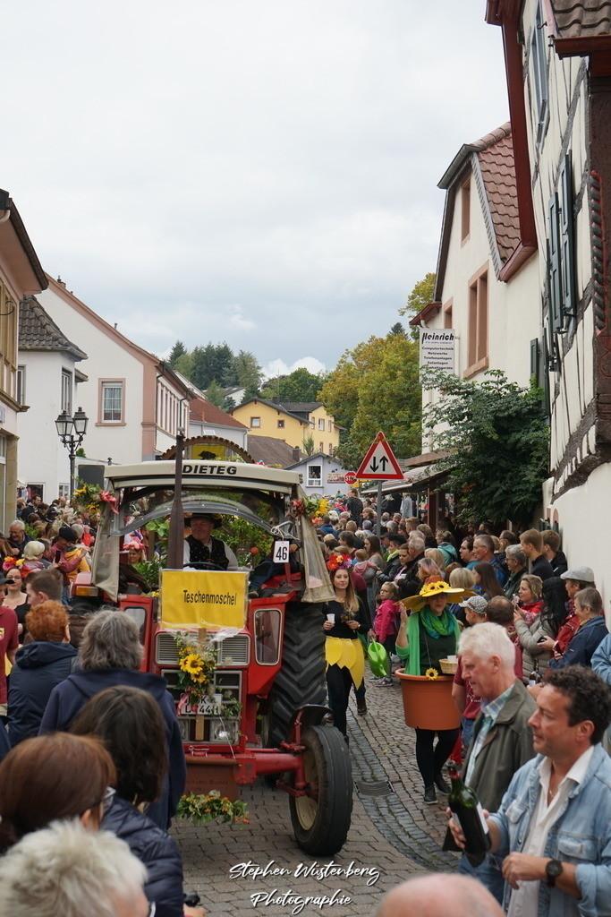 DSC07790 | Umzug zum 70.Nordpfälzer Herbstfest