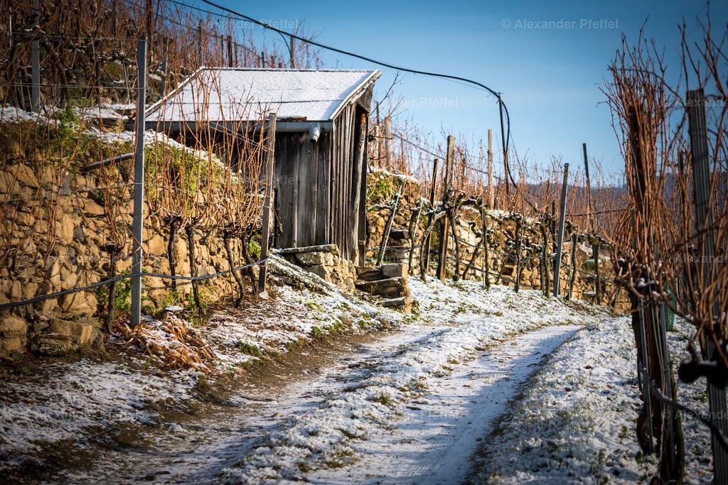 wachau_winter_weingarten_(c)apfeffel_ (38)