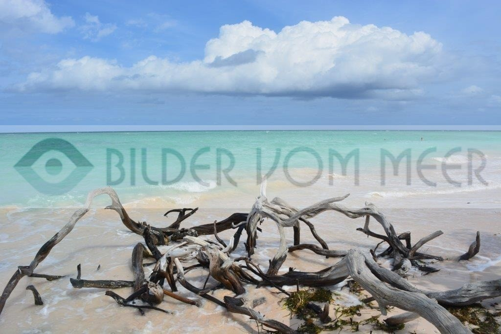 Bilder vom Meer Karibik | Strandbilder der kubanischen Insel Cayo Jutías