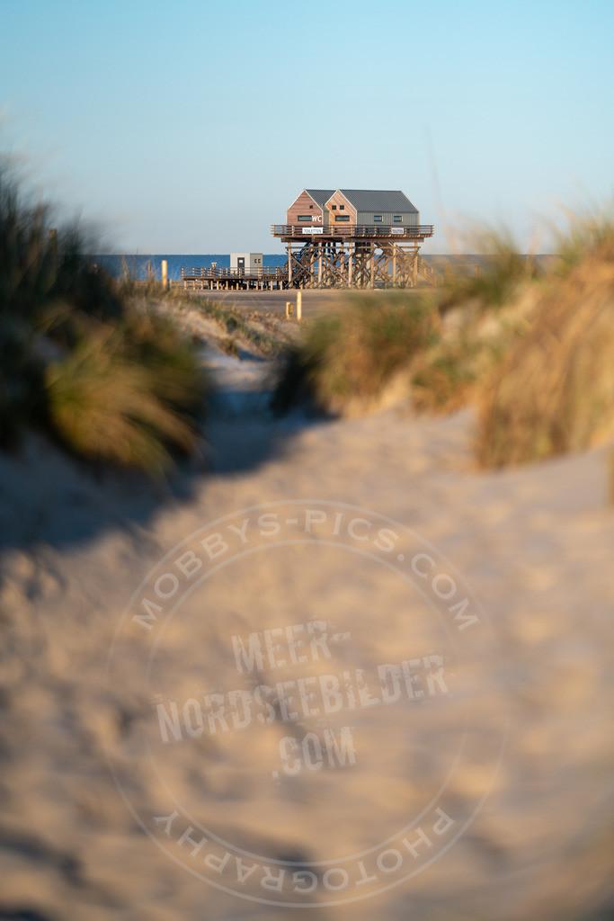 _MGA2276   The way to the beach