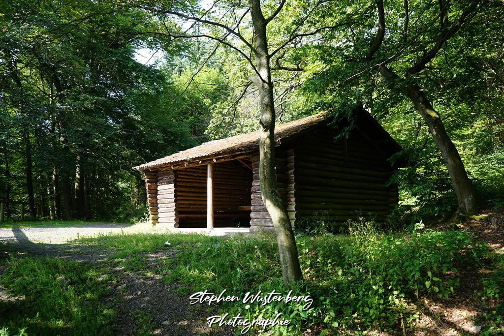 Hirtenfelshütte | Hirtenfelshütte auf dem Donnersberg