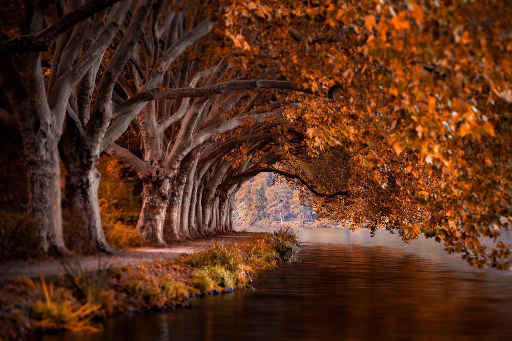 Baldeneysee in Essen | Herbststimmung am Baldeneysee in Essen