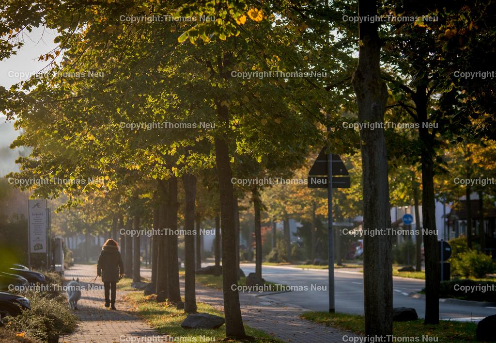 Heerbststimmung-10 | Bensheim,Europaallee, Herbsliches Licht in den Morgenstunden, ,, Bild: Thomas Neu