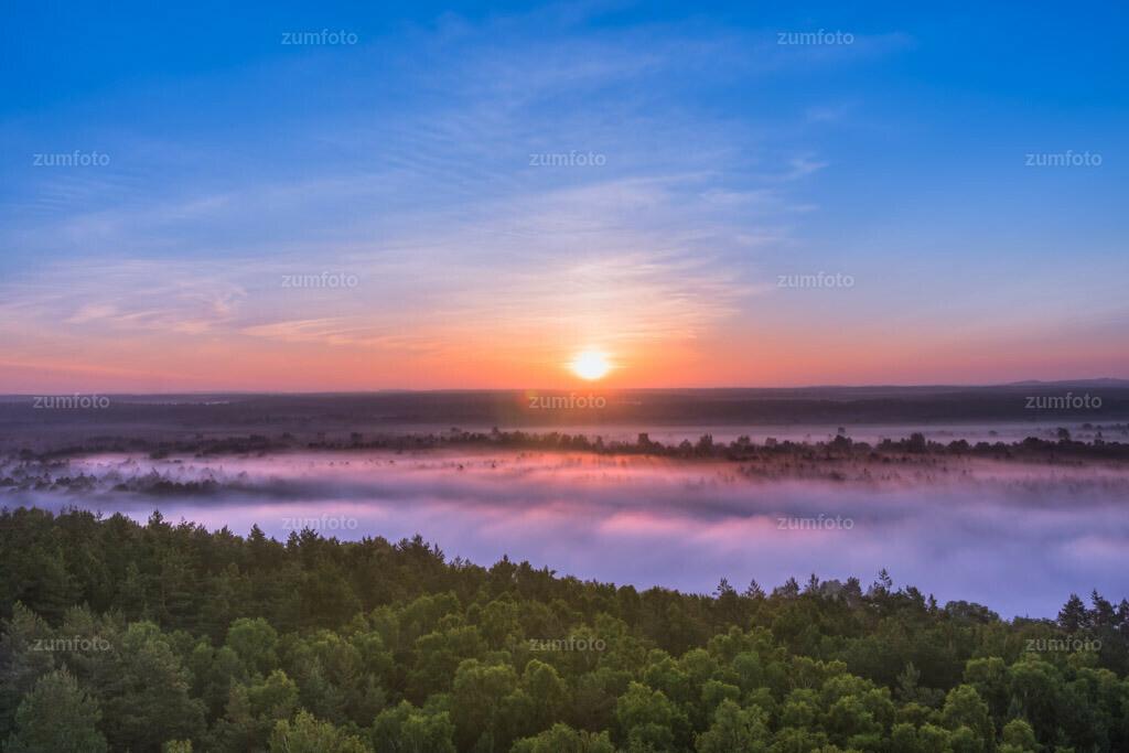 0-110602_0356-4262-14 | Sonnenaufgang über dem Müritznationalpark. Fotografiert vom Käflingsturm aus. --Dateigröße 3806 x2537 Pixel--