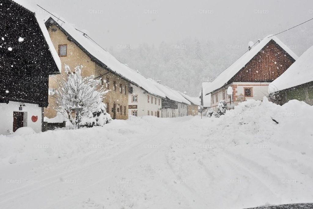 Schnee-Winter-Jan14_015_1