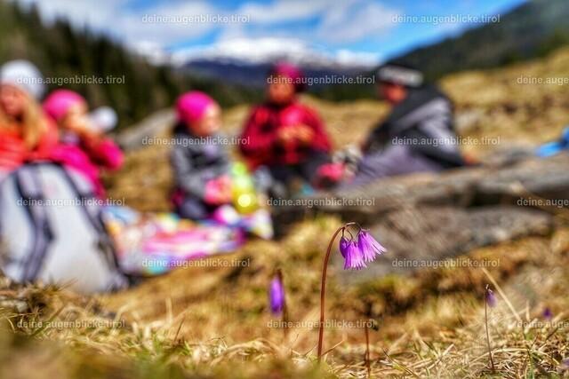 AF_01053-01 | Obernberger See im Tiroler Wipptal. Ein Wanderparadies.