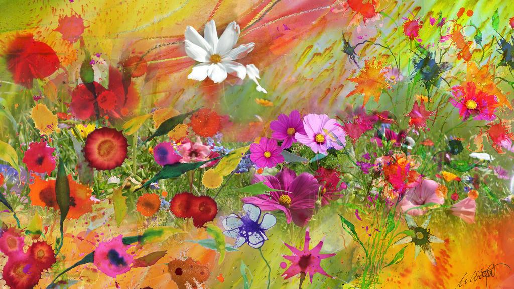 Sommerblumen V01a | Gerade schneit es aber ich wurde gebeten etwas richtig sommerliches für ein Wohnzimmer zu entwerfen ... So geselle ich meine Blumen zu den wirklich schönen, bringe Farben und Fotos in Schwung und bin wieder eine kleine Weile dabei, bei der großen Kunst der Natur.  so grüßt der Sommer den Winter und ich Euch.