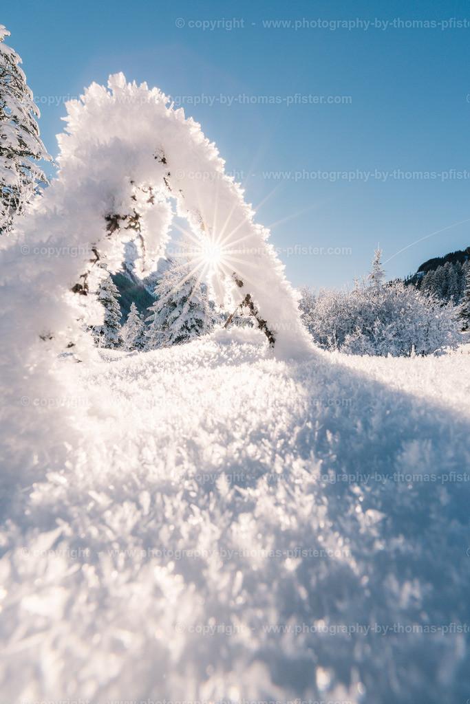 Winter in Madseit im Tux-1