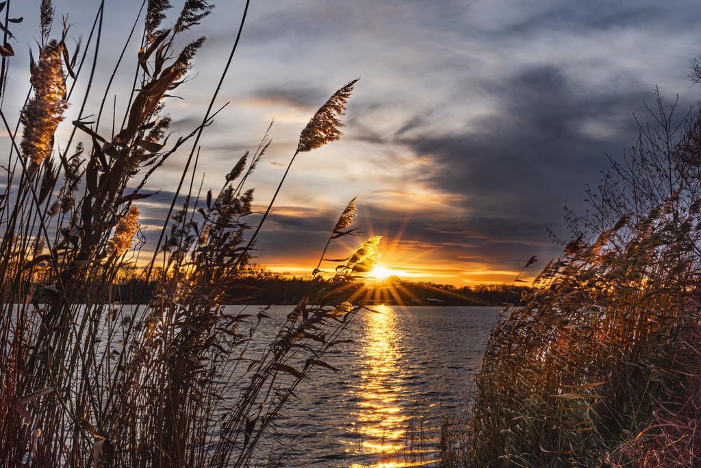 Sonnenstern Allersee am Abend