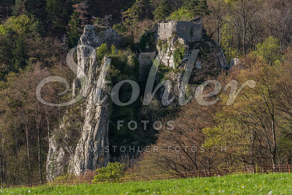 Ruine Rifenstein, Reigoldswil (BL)   Die Ruine Rifenstein wurde auf einem markanten Felsen erbaut, Reigoldswil im Kanton Baselland.