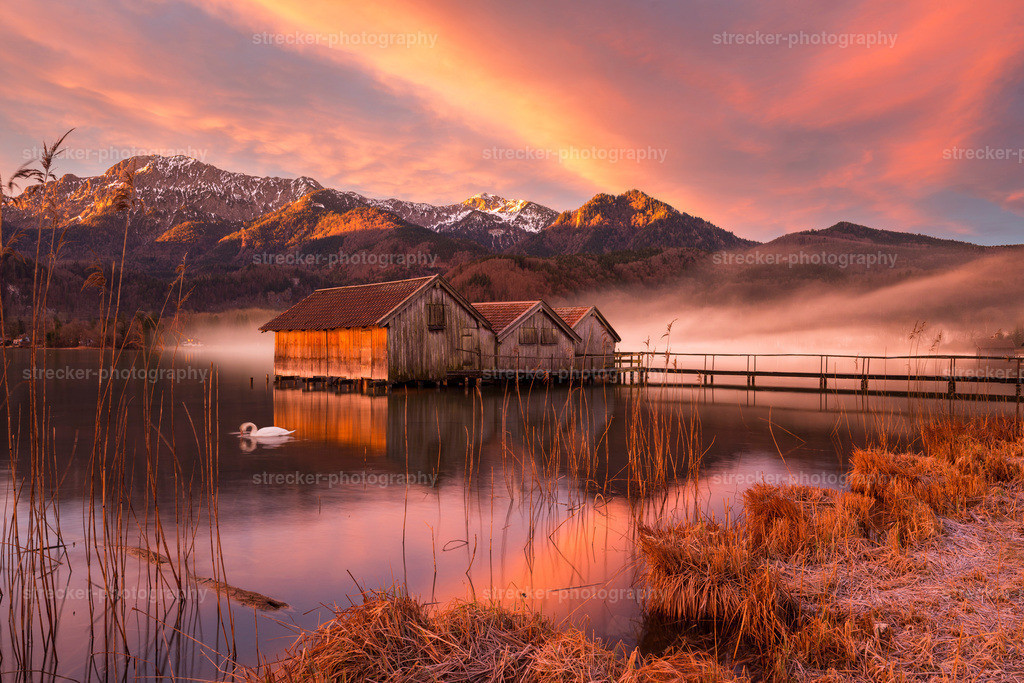 Boathouses at Morning | Bootshaus am Morgen