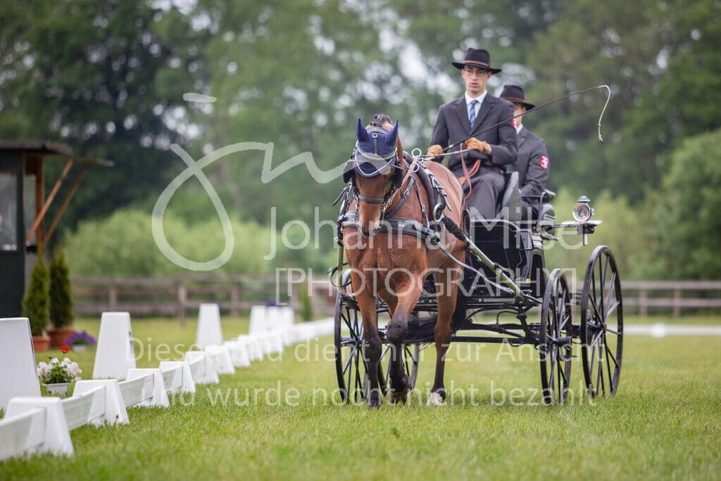 190525_Fahren-002 | Pferdesporttage Herford 2019 Fahren