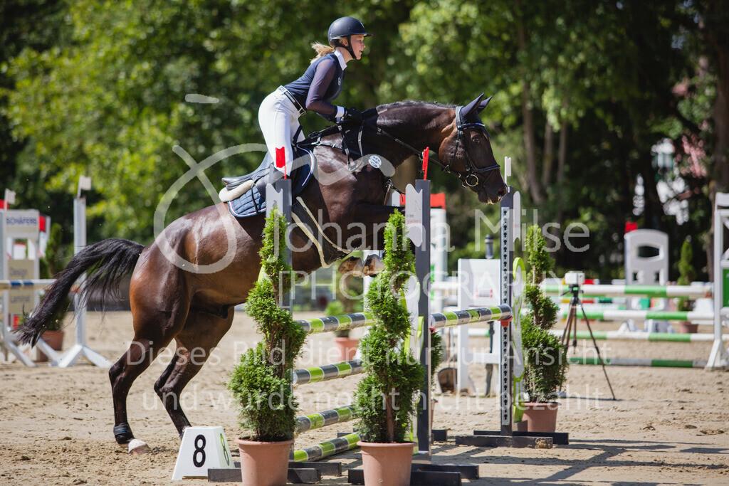 200819_Delbrück_Sprpf-A_2_1-230 | Delbrück Masters 2020 Springpferdeprüfung Kl. A** 4-6jährige Pferde
