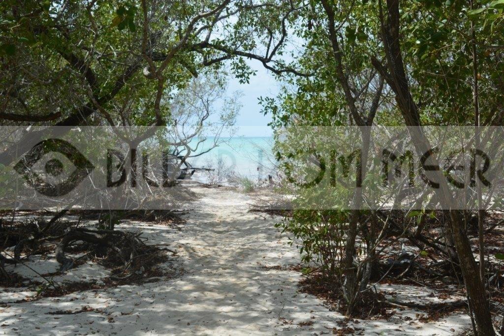 Fotoausstellung Bilder vom Meer | Wilder Kuba Strand