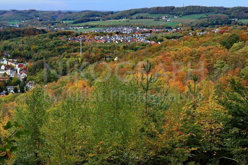 Iserlohner Herbst | Der Iserlohner Stadtwald im bunten Herbstkleid.