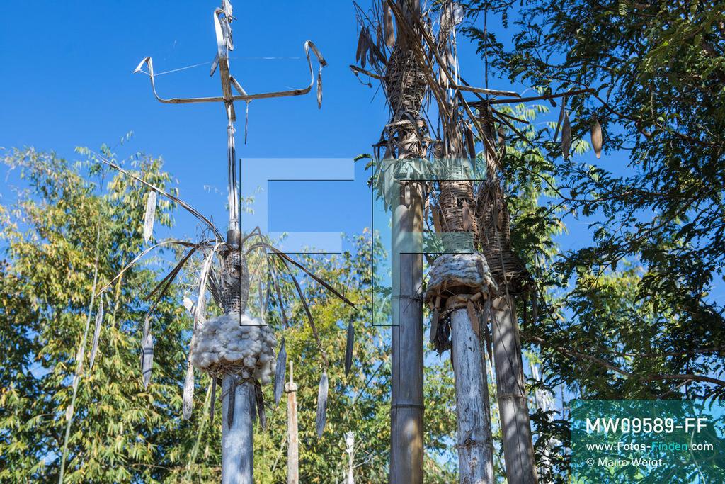 MW09589-FF   Myanmar   Loikaw   Reportage: Loikaw im Kayah State   Heilige Totempfähle (Kayhto Bo) auf einem Ritualplatz nahe Loikaw. Jedes Jahr im März oder April feiern die Kayah das traditionelle Kay Htoe Boe Festival.  ** Feindaten bitte anfragen bei Mario Weigt Photography, info@asia-stories.com **