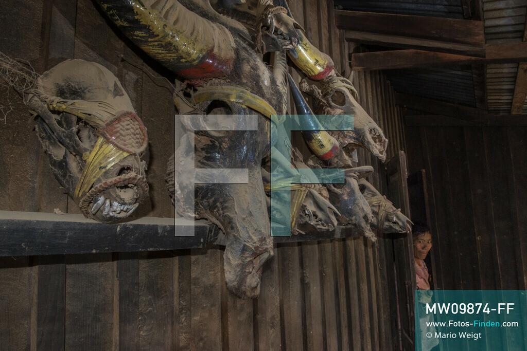 MW09874-FF | Myanmar | Mindat | Reportage: Mindat im Chin State | Haus eines Jägers vom Bergvolk der Chin. Bizarre Trophäensammlung mit Schädel von Mithun (Gayal), Büffel, Hirsch, Wildschwein und Bär. Jagd war ein wichtiger Teil im täglichen Leben der Chin-Männer.   ** Feindaten bitte anfragen bei Mario Weigt Photography, info@asia-stories.com **