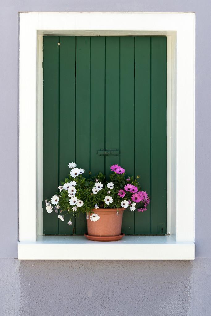 Stilleben im Fenster