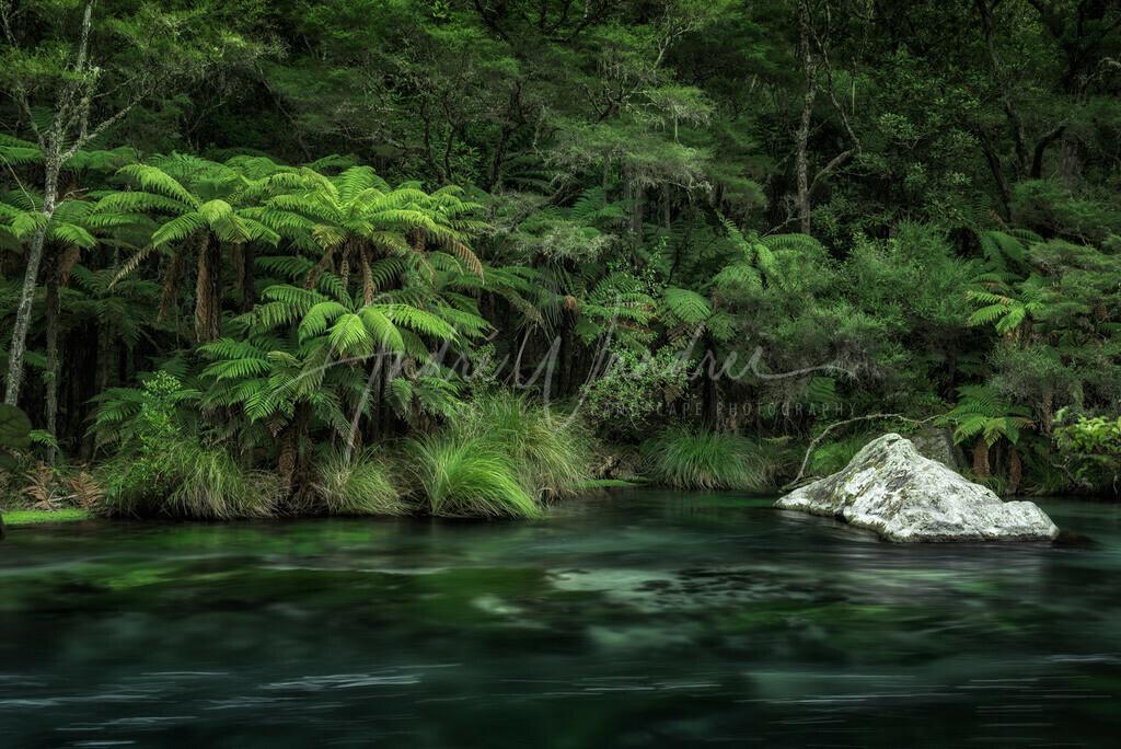 Am grünen Fluss