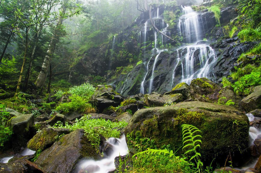 Zweribachfälle | Wasserkaskade der Zweribachfälle im mittleren Schwarzwald