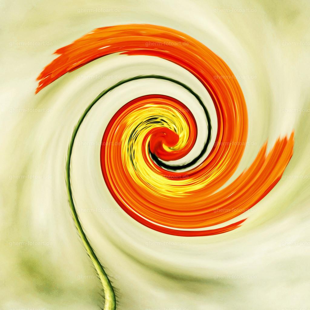 _DSC0911_cinema_q-spirale-paint.net-40x40-ps-hintergrund-LR-korr