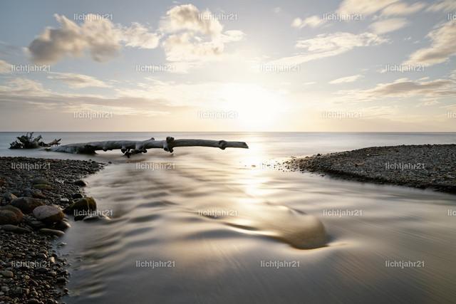 Sonnenuntergang mit Fluß und Treibholz | Malerischer Sonnenuntergang am Steinstrand, Blickführung entlang eines kleinen Flusses, der in's Meer mündet, angeschwemmter Baum vor dem Horizont, Wellen, Langzeitbelichtung - Location: Karibik, Kleine Antillen, Insel Dominica