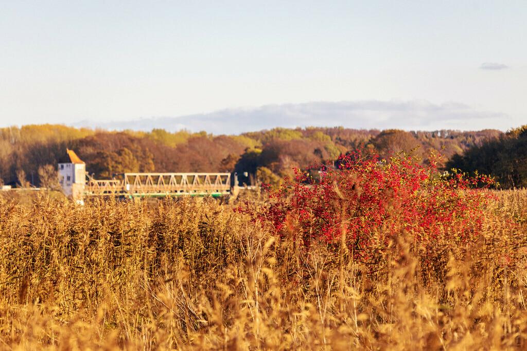 Lindaunis an der Schlei   Lindaunis an der Schlei im Herbst mit der Schleibrücke in der Unschärfe