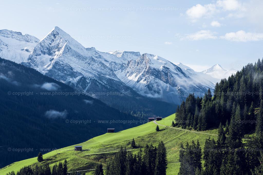 Weisse Gipfel im Tuxertal