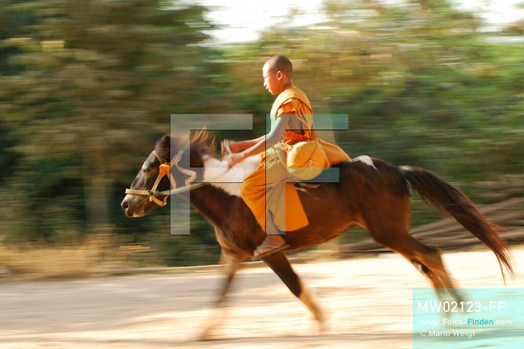 MW02123-FF | Thailand | Goldenes Dreieck | Reportage: Buddhas Ranch im Dschungel | Der junge Mönch Aa-Lu auf seinem Pferd Dee Dee  ** Feindaten bitte anfragen bei Mario Weigt Photography, info@asia-stories.com **