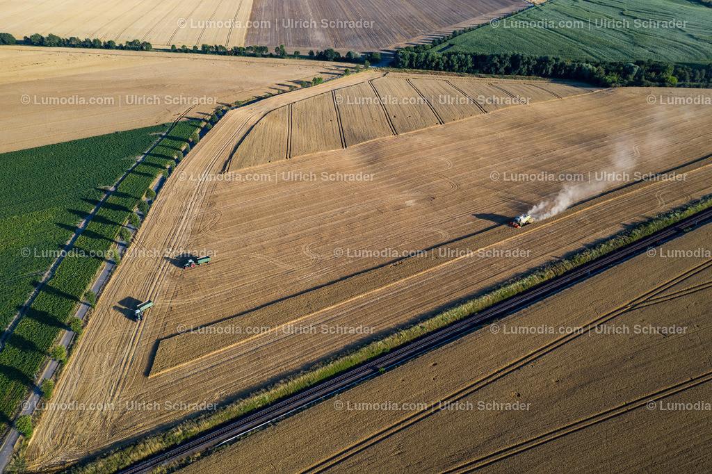 10049-50673 - Getreideernte bei Langenstein