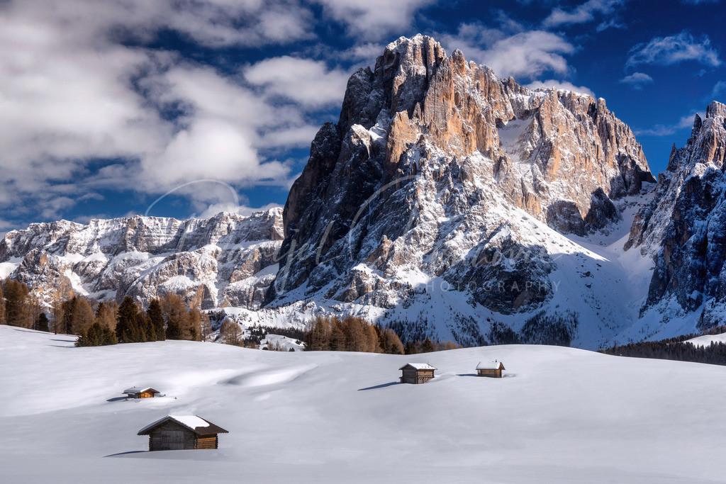 Seiser Alm / Alpe di Siusi | Winter auf der Seiser Alm mit Blick zum Langkofel