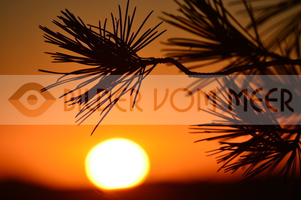 Fotoausstellung Meer Bilder | Bilder Sonnenuntergang