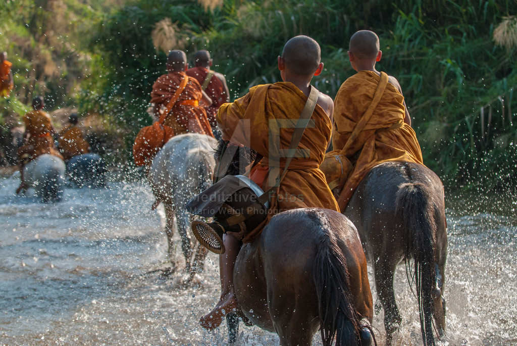 Reitende Moenche | Moenche vom Golden Horse Temple