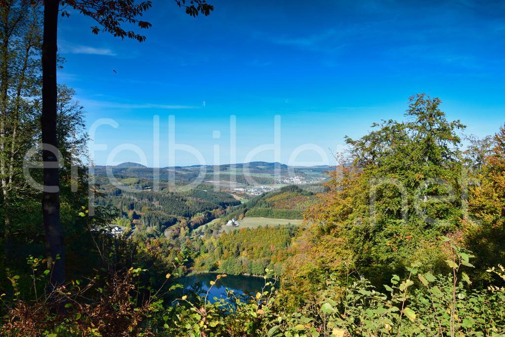 Herbst am Gemündener Maar   Daun, Eifel / Vulkaneifel