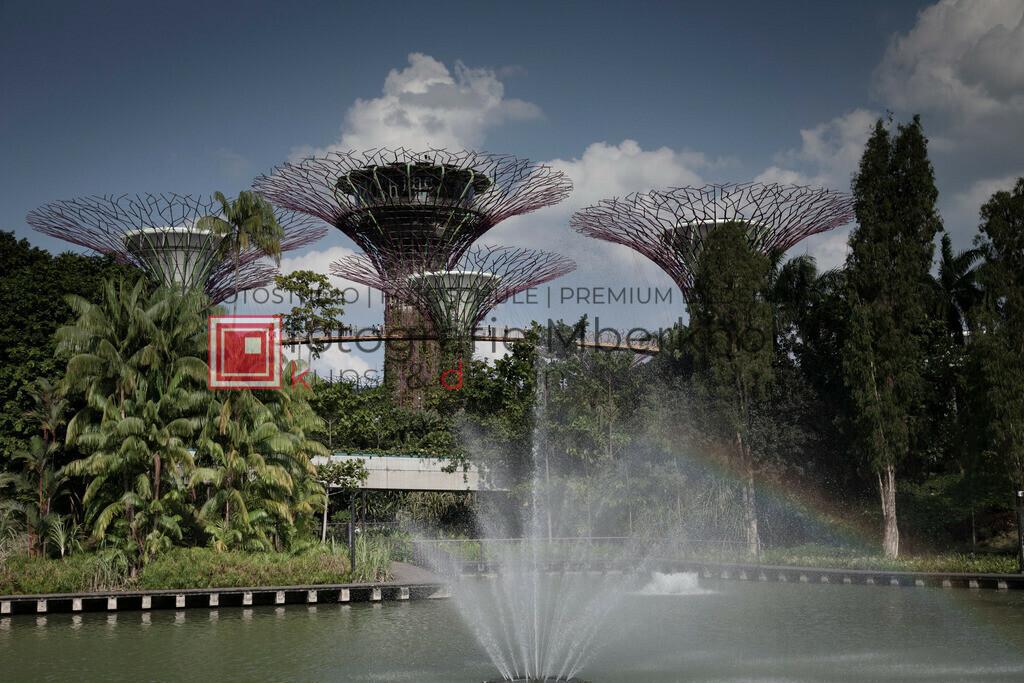 _Rainer_Schau_mberkholz_Singapur_IMG_7896 | Das Projekt