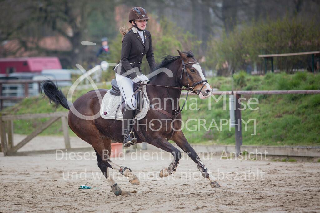 190406_Frühlingsfest_StilE-085 | Frühlingsfest der Pferde 2019, von Lützow Herford, Stil-WB mit erlaubter Zeit
