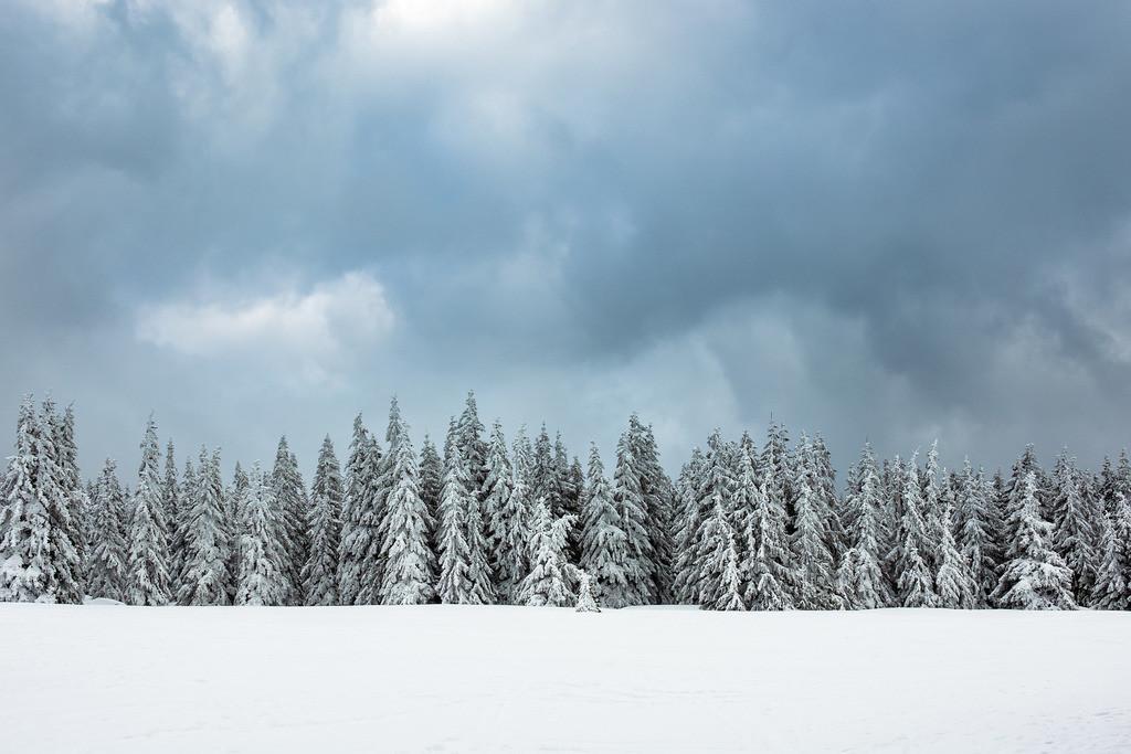 rk_05756 | Winter im Riesengebirge bei Pec pod Snezkou, Tschechien.
