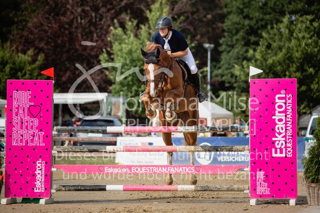 190801_BST_Springpferde-M_5-7J-421 | Braker Sommerturnier 2019 Springpferdeprüfung Kl. M* 5-7jährige Pferde