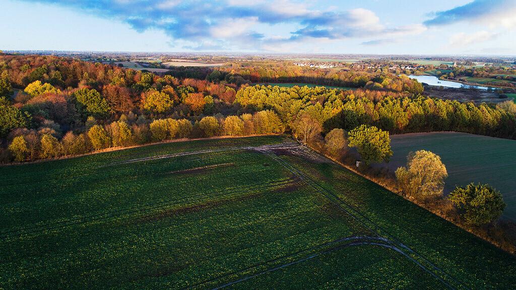 Stormarn im Oktober | Landschaft im Herbst, zwischen Zarpen und Rehhorst, Stormarn, Schleswig-Holstein