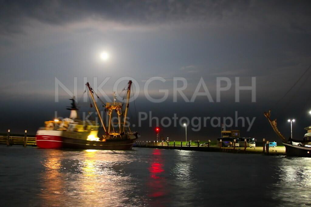 Hafenausfahrt von Oudeschild   Eine Nachtaufnahme am Hafen von Oudeschild. Ein Fischerboot fährt gerade aus dem Hafen auf das Meer hinaus. Der Vollmond leuchtet zwischen den Wolken.