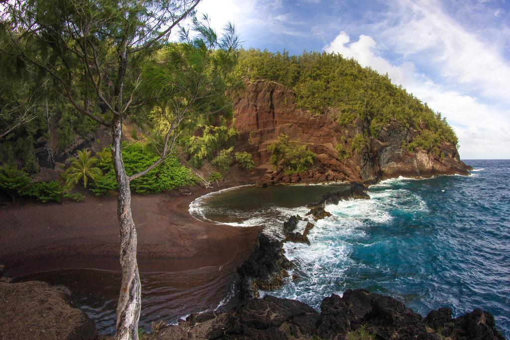 Hawaii RAW (2977)