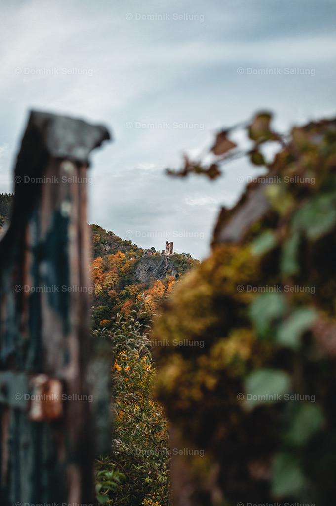 Renus | DA - ist die Grevenburg Ruine