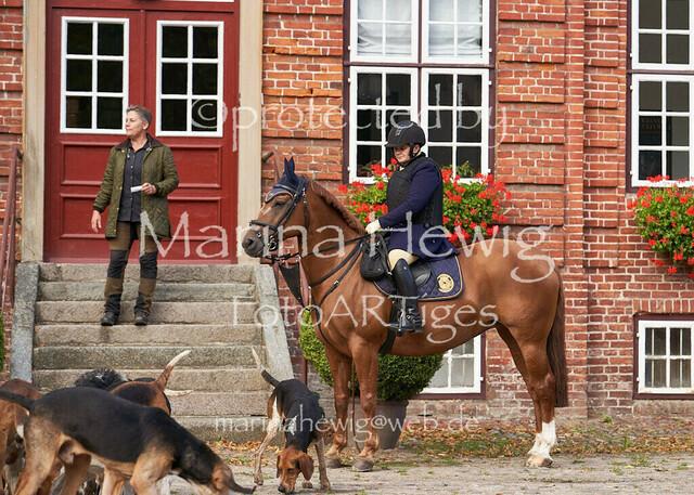 Jagd Knoop 216993_Marina Hewig