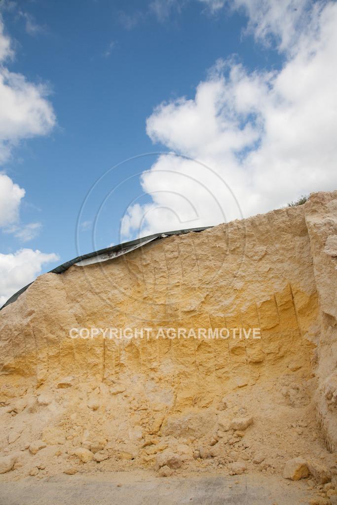20100505-IMG_6150 | Fahrsilo einer Biogasanlage - AGRARFOTO