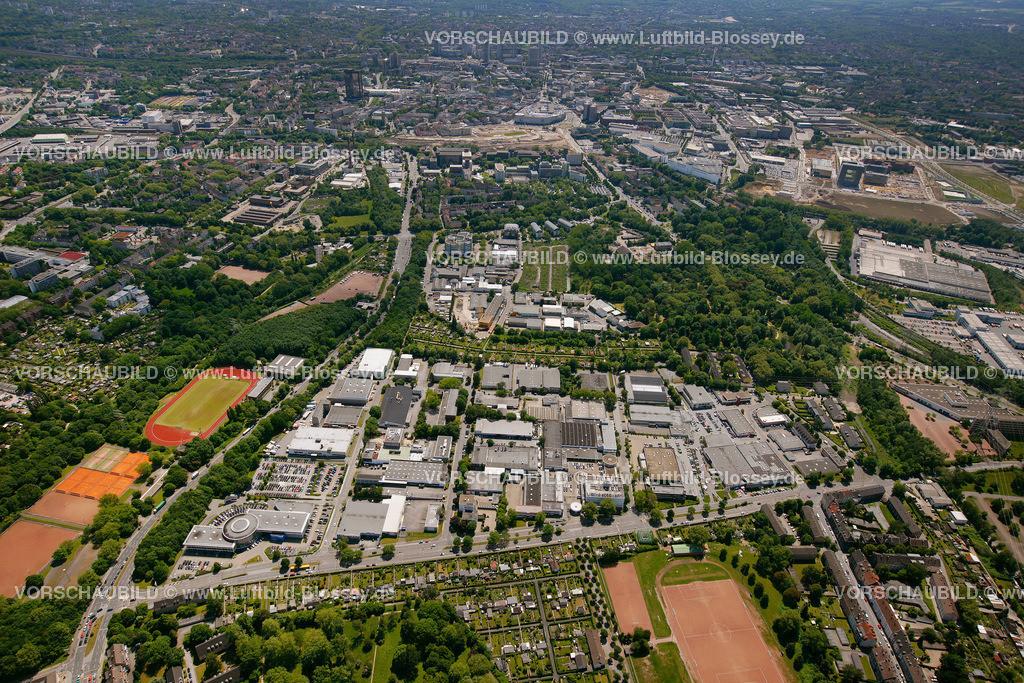 ES10058484 |  Essen, Ruhrgebiet, Nordrhein-Westfalen, Germany, Europa, Foto: hans@blossey.eu, 29.05.2010