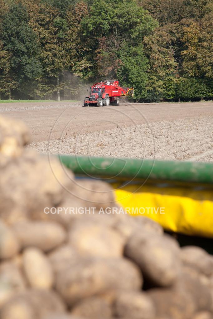 20110929-IMG_5946 | Ernte auf einem Kartoffelfeld - AGRARBILDER
