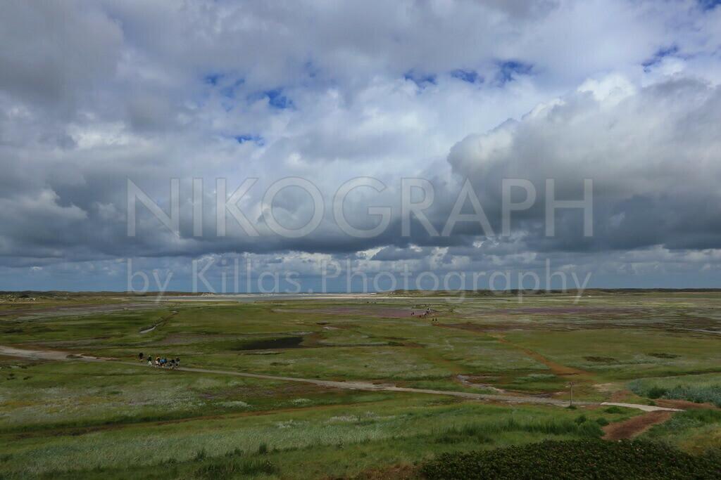 De Slufter | Das Naturschutzgebiet De Slufter auf Texel. De Slufter ist das einzige Gebiet der Niederlande, in der das Meer ungehindert eindringen kann. Eine einzigartige Dünenlandschaft mit zahlreichen Wandermöglichkeiten und einer interessanten Vegetation.